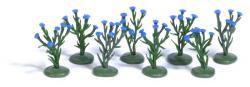 H0  8 Kornblumenpflanzen H0       NH2016        [UVP  13.99]