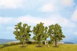 Obstbäume, grün, 3 Stück     ck                Spur_N (Z)