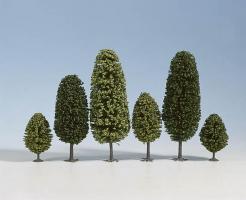 N     Laubbäume, 25 Stück, 6,5 - 11            Spur_N (Z)
